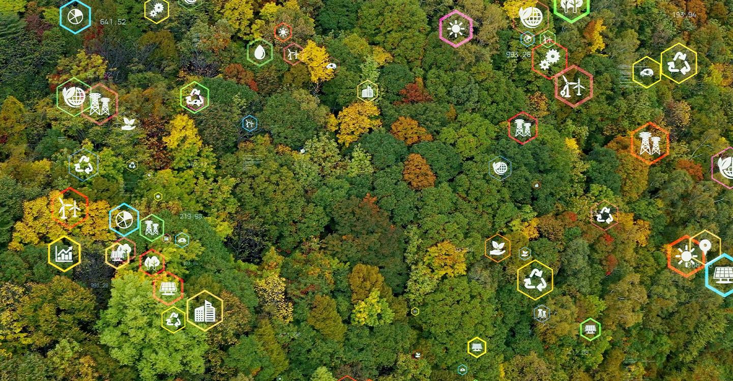 ESG (Environmental, Social, and Governance)